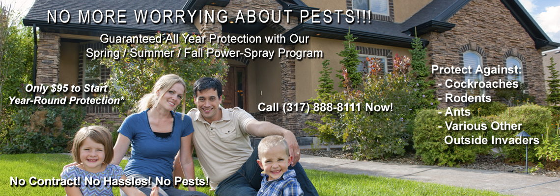 Annual Pest Control Maintenance
