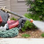 power-spray-program